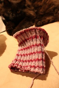 Clara's Ribbed Hat