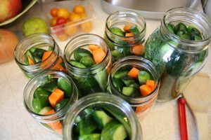 Canning Cukes